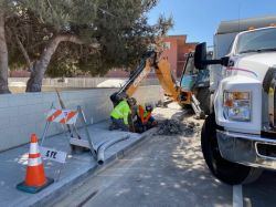 Joint Trench Work in Sidewalk along Antoinette Lane