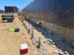 Chipped Piles along Shoring Wall at LPR Site